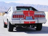 Mustang Cobra II 1976 photos