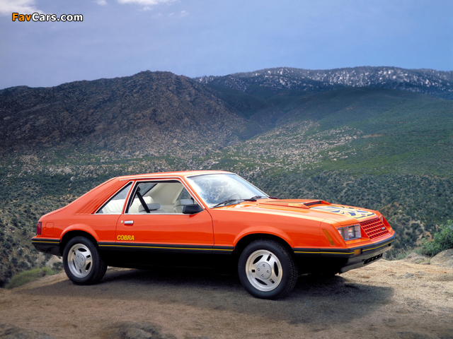 Images of Mustang Cobra 1981–82 (640 x 480)