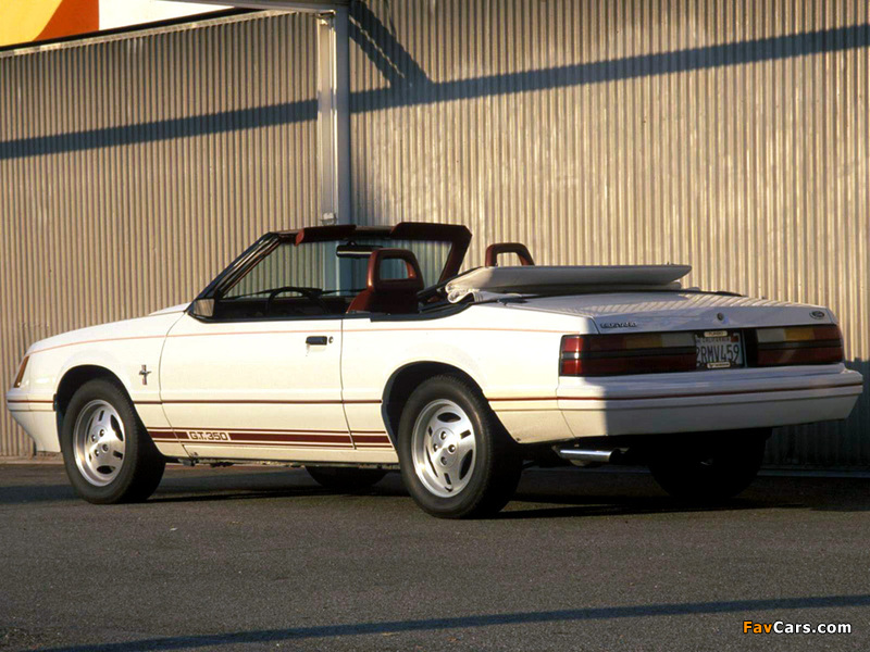 Mustang GT350 Turbo Convertible Anniversary Edition 1984 pictures (800 x 600)