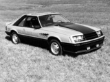Pictures of Mustang Indy 500 Pace Car 1979
