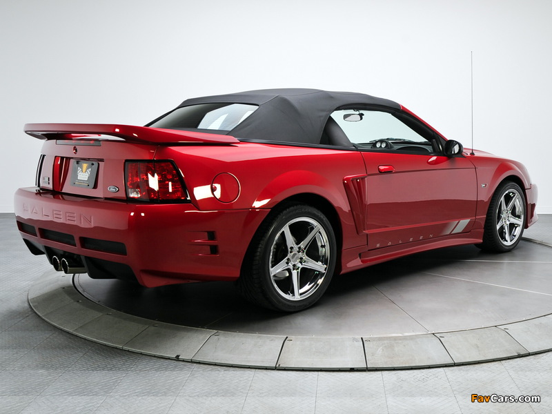 Images of Saleen S281 SC Extreme Convertible 2002 (800 x 600)
