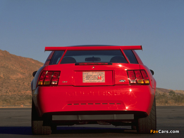 Mustang SVT Cobra R 2000–04 pictures (640 x 480)
