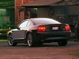 Mustang Bullitt GT 2001 images