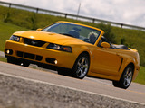 Mustang SVT Cobra Convertible 2002–04 images