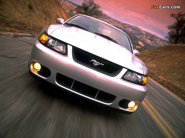 Mustang SVT Cobra Coupe 2002–04 images (640 x 480)