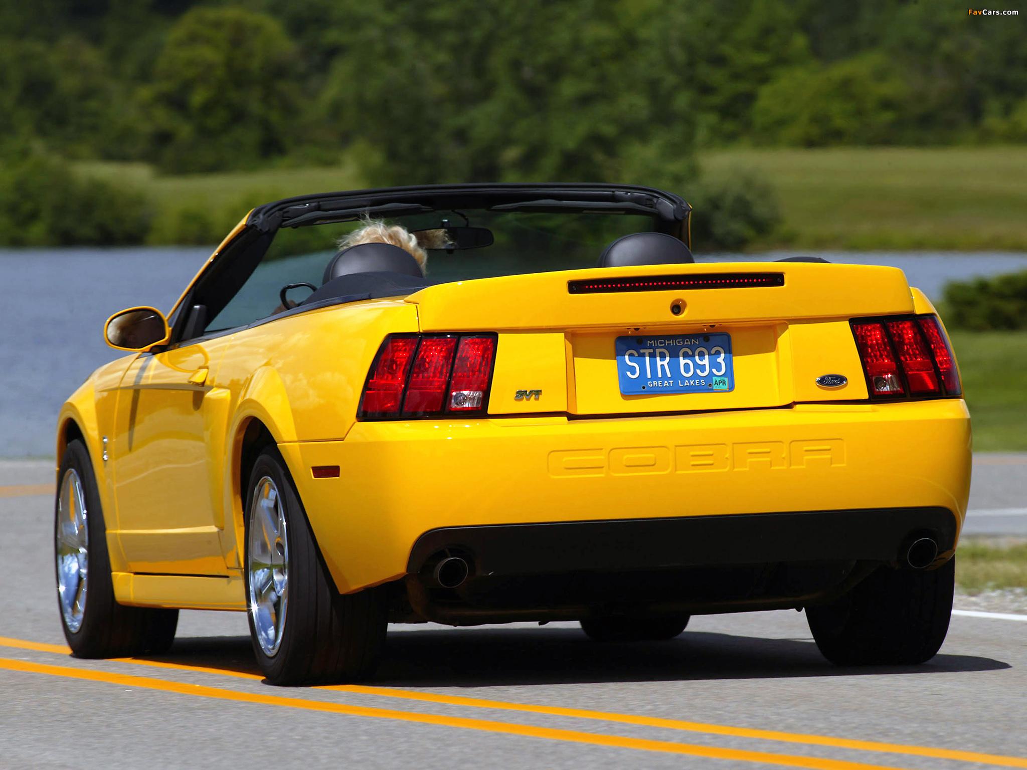 Mustang SVT Cobra Convertible 2002–04 photos (2048 x 1536)