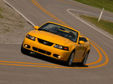 Mustang SVT Cobra Convertible 2002–04 photos