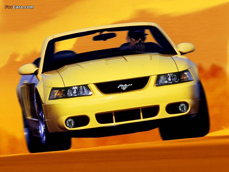 Mustang SVT Cobra Convertible 2002–04 wallpapers (800 x 600)