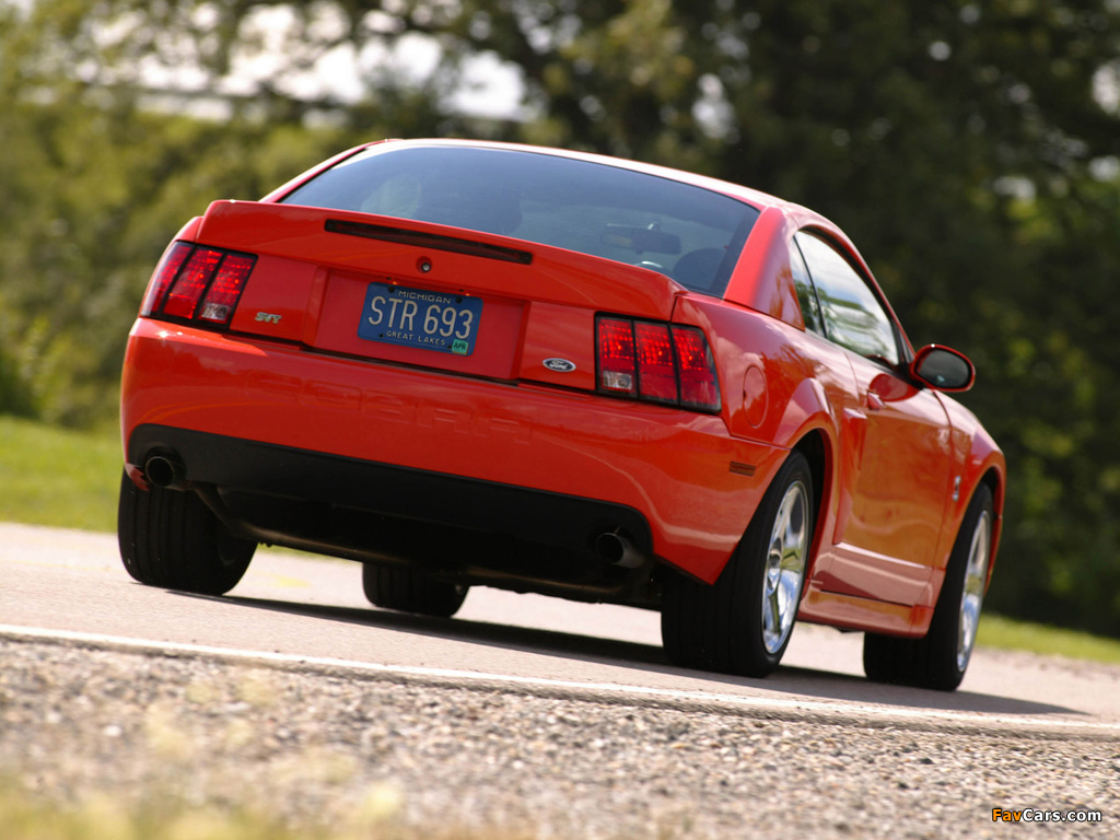 Mustang SVT Cobra Coupe 2002–04 wallpapers (1024 x 768)