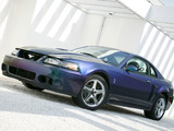 Mustang SVT Cobra Mystichrome 2004 photos