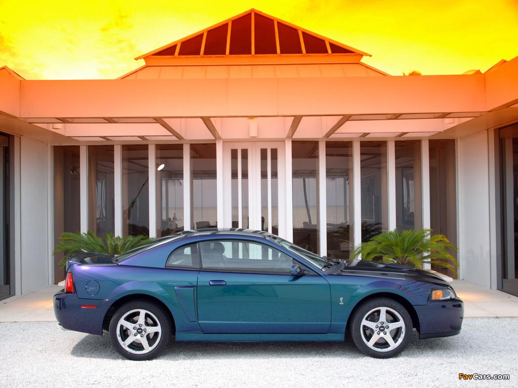 Mustang SVT Cobra Mystichrome 2004 pictures (1024 x 768)