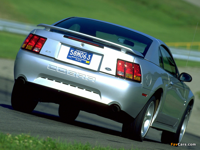 Photos of Mustang SVT Cobra Coupe 1999–2002 (800 x 600)