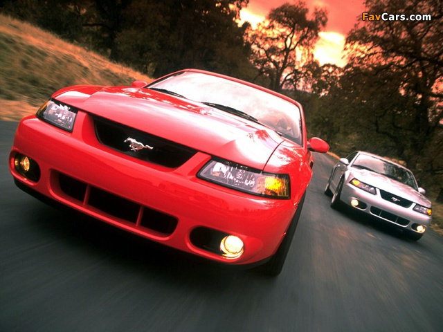 Photos of Mustang SVT Cobra Coupe 2002–04 (640 x 480)