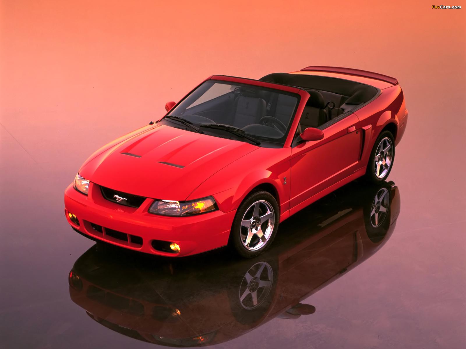 Photos of Mustang SVT Cobra Convertible 2002–04 (1600 x 1200)