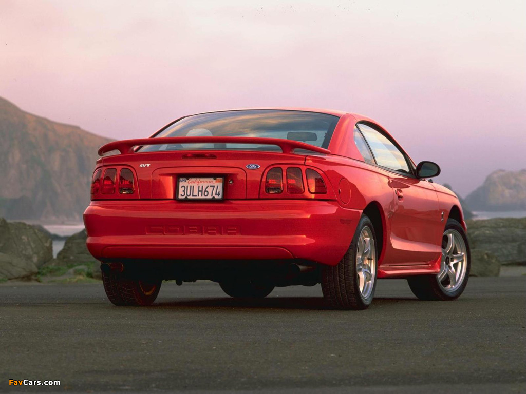 Pictures of Mustang SVT Cobra Coupe 1996–98 (1024 x 768)