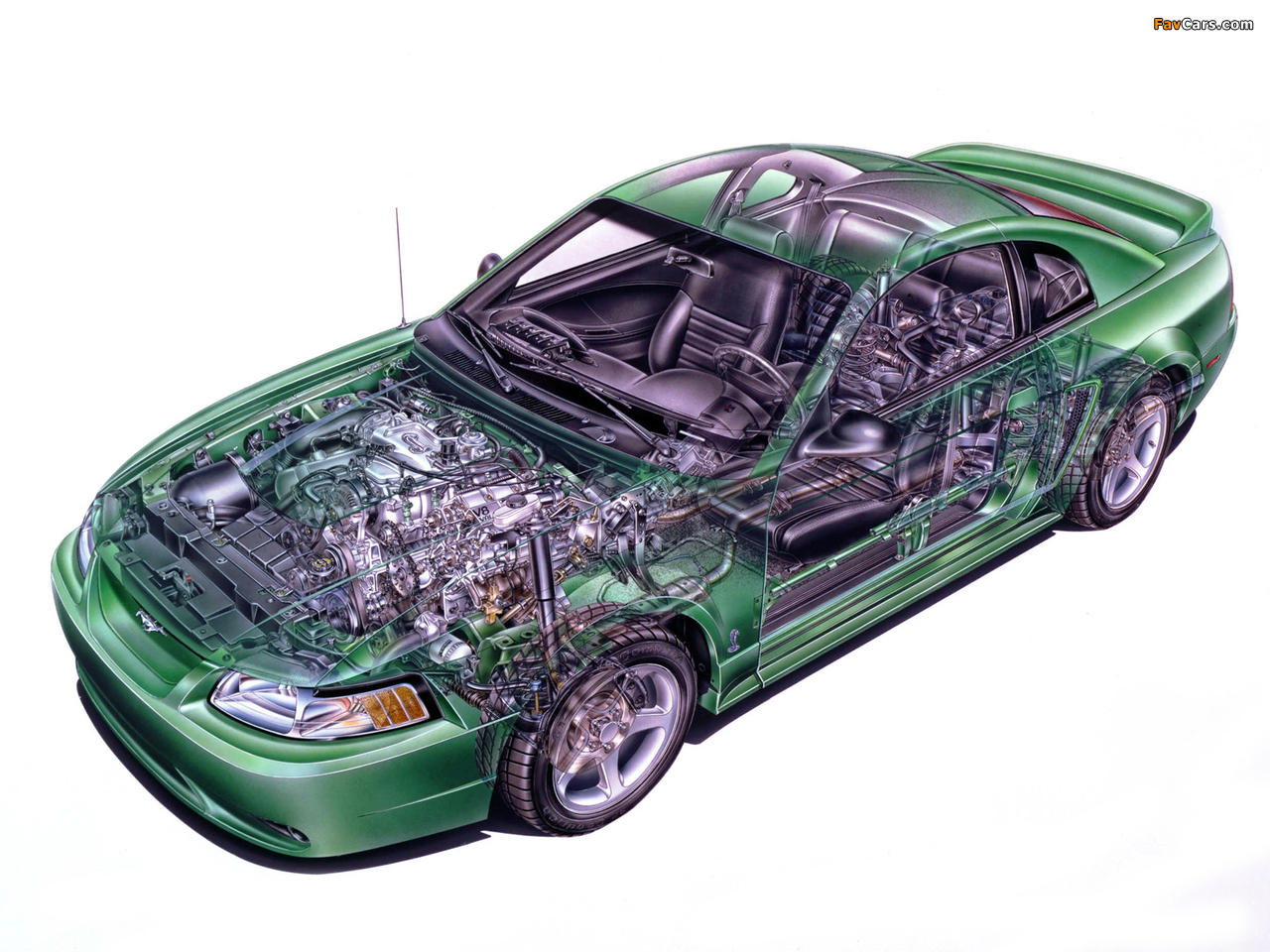 Pictures of Mustang SVT Cobra Coupe 1999–2002 (1280 x 960)