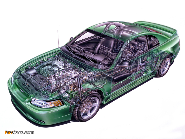 Pictures of Mustang SVT Cobra Coupe 1999–2002 (640 x 480)