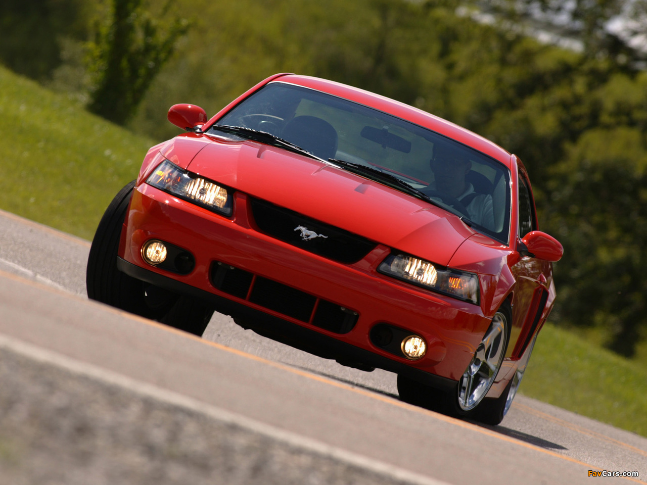 Pictures of Mustang SVT Cobra Coupe 2002–04 (1280 x 960)