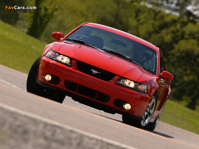 Pictures of Mustang SVT Cobra Coupe 2002–04 (640 x 480)