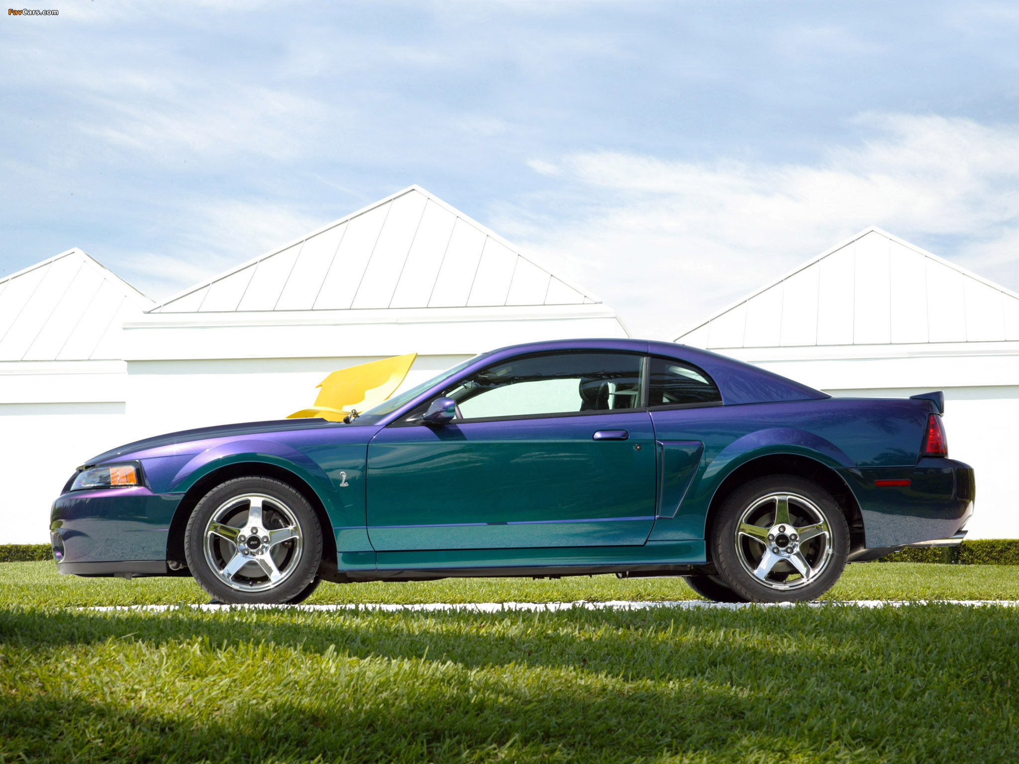 Pictures of Mustang SVT Cobra Mystichrome 2004 (2048 x 1536)