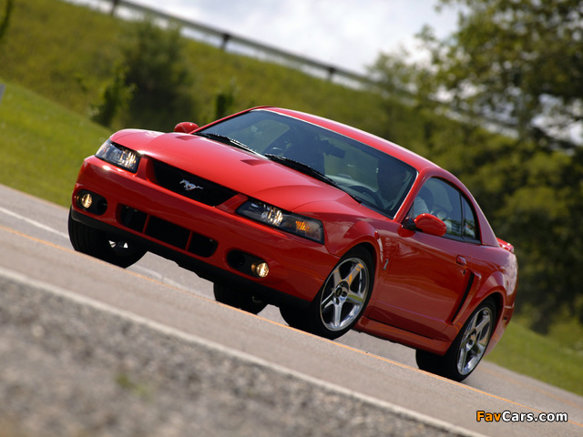 Mustang SVT Cobra Coupe 2002–04 wallpapers (640 x 480)