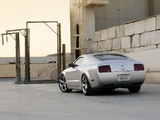 Images of Mustang Iacocca 45th Anniversary Edition 2009