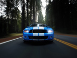 Images of Shelby GT500 2009–10
