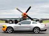 Images of Mustang AV-X10 Dearborn Doll 2009