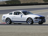 Images of Mustang Race Car 2005–09