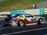 Mustang GT3 2010 photos