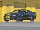 Shelby GT350 50th Anniversary 2012 pictures