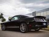 Roush RS 2013 photos