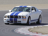 Mustang Race Car 2005–09 images