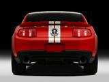Photos of Shelby GT500 SVT 2010–12