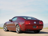 Pictures of Mustang Iacocca 45th Anniversary Edition 2009