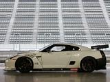 Nissan GT-R FIA GT1 (R35) 2009 images