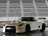 Nissan GT-R FIA GT1 (R35) 2009 photos