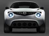 Images of Nissan Qazana Concept 2009