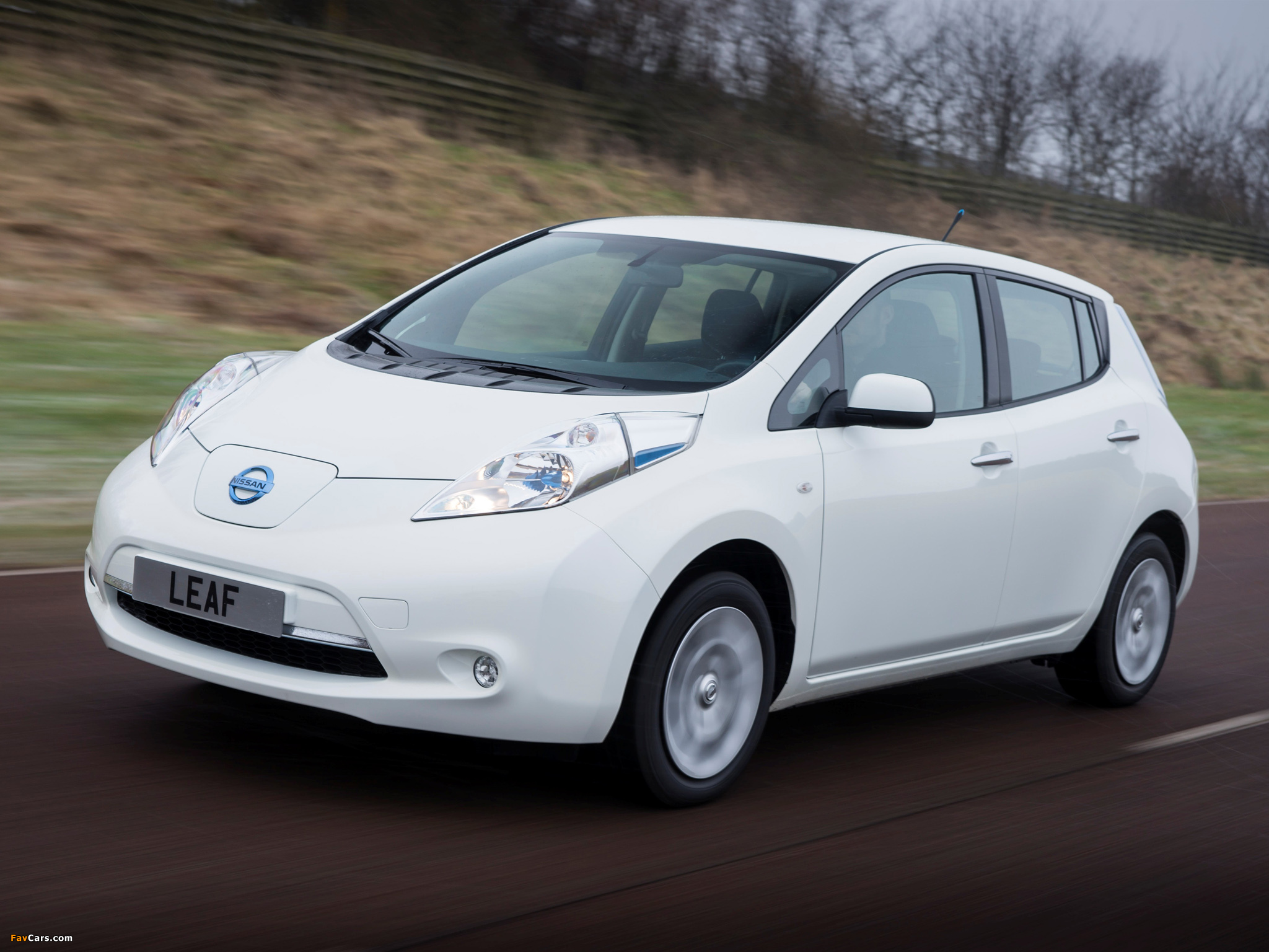 Pictures of Nissan Leaf 2013 (2048 x 1536)