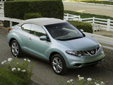 Images of Nissan Murano CrossCabriolet 2010