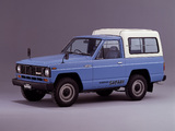 Pictures of Nissan Safari Hard Top AD (160) 1980–85
