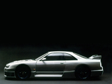 Images of Nismo Nissan Skyline GT-R LM (BCNR33) 1995–96