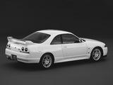 Nissan Skyline GT-R V-spec N1 (BCNR33) 1995–98 photos