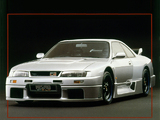 Nismo Nissan Skyline GT-R LM (BCNR33) 1995–96 wallpapers
