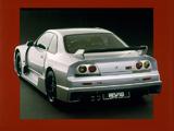 Photos of Nismo Nissan Skyline GT-R LM (BCNR33) 1995–96