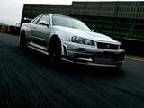 Nismo Nissan Skyline GT-R Z-Tune (BNR34) 2004 wallpapers
