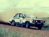 Images of Nissan Violet Rally Car (A10) 1978–82