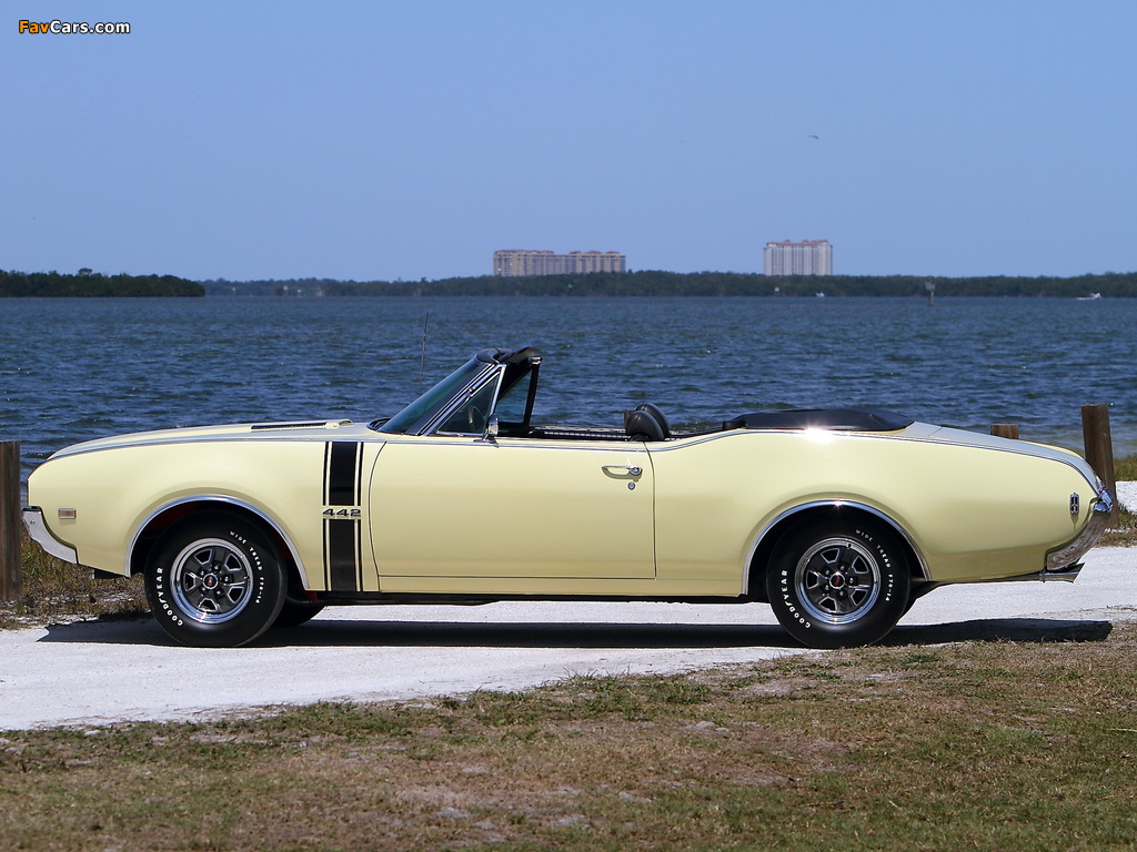 Oldsmobile 442 Convertible (4467) 1968 photos (1024 x 768)