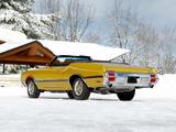 Photos of Oldsmobile Cutlass 442 W-30 Convertible 1972