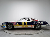 Pictures of Oldsmobile 442 NASCAR Race Car 1980